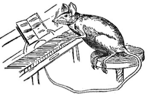 mouse_playing_piano